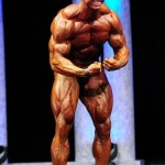 Arnolds 2011